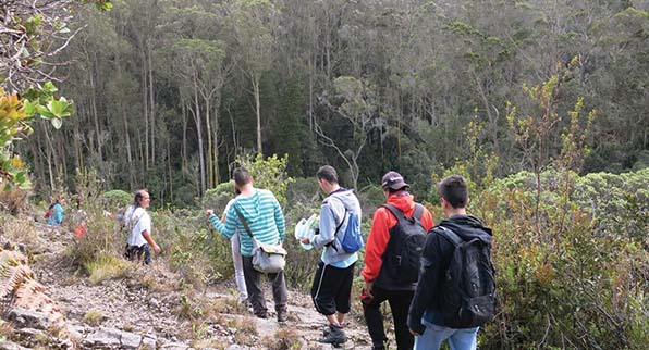 Caminatas Quebrada La Vieja