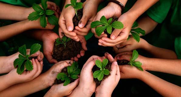 Premio Responsabilidad Ambiental
