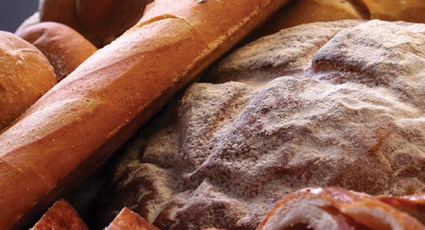 Programa Panadería