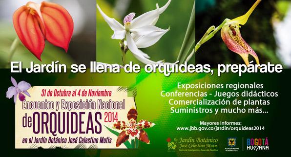 Encuentro y exposición nacional de orquídeas