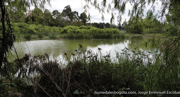 Bicicaravana humedales
