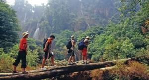 Tailandia---Acude-al-llamado-de-la-selva