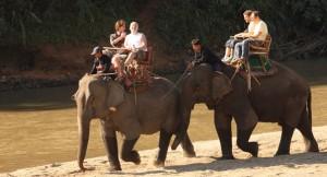 Tailandia--Pasea-en-elefante