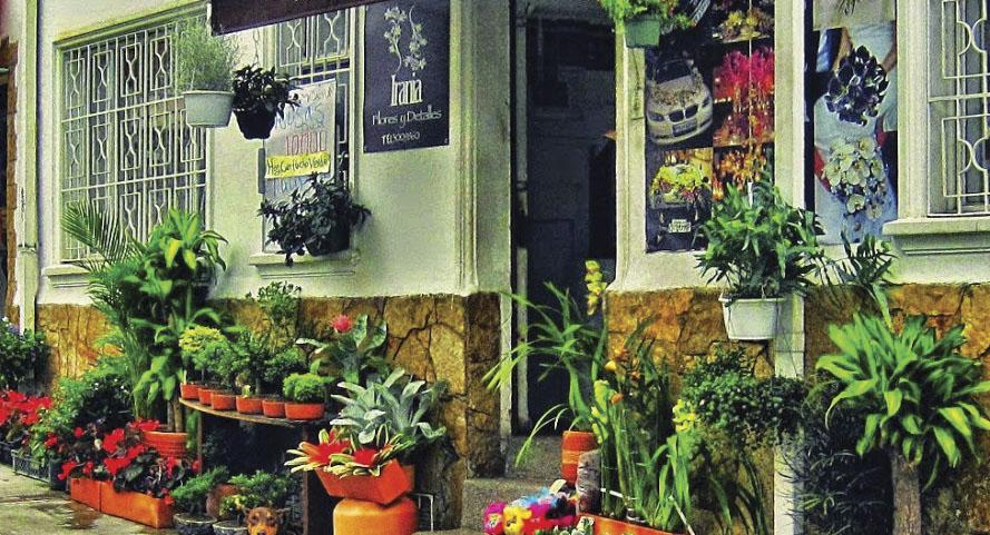 Irania, flores y detalles