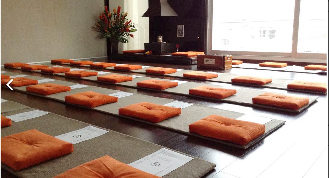 Academia de Yoga Satyananda