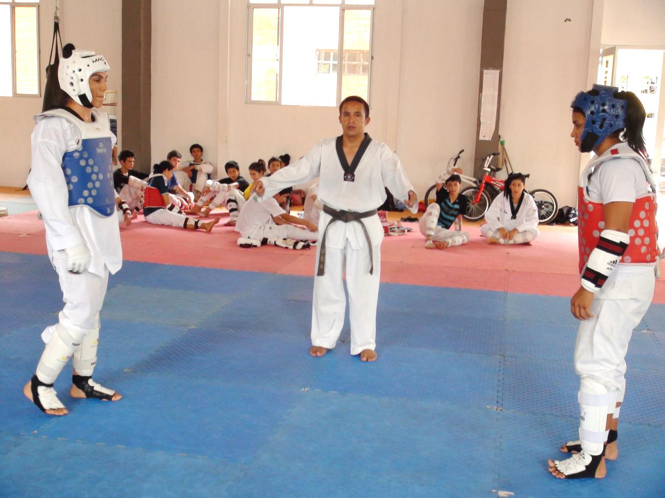 Liga de Taekwondo