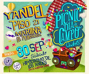 PICNIC DÍA DE CAMPO