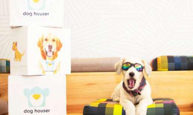 DOG HOUSER